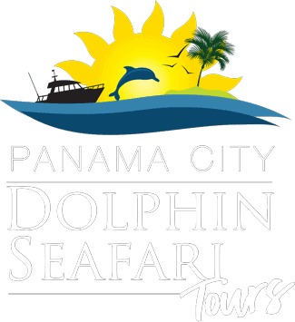 Panama City Dolphin Safari Tours Logo. Horizontal with white letters, sun, water, and dolphin